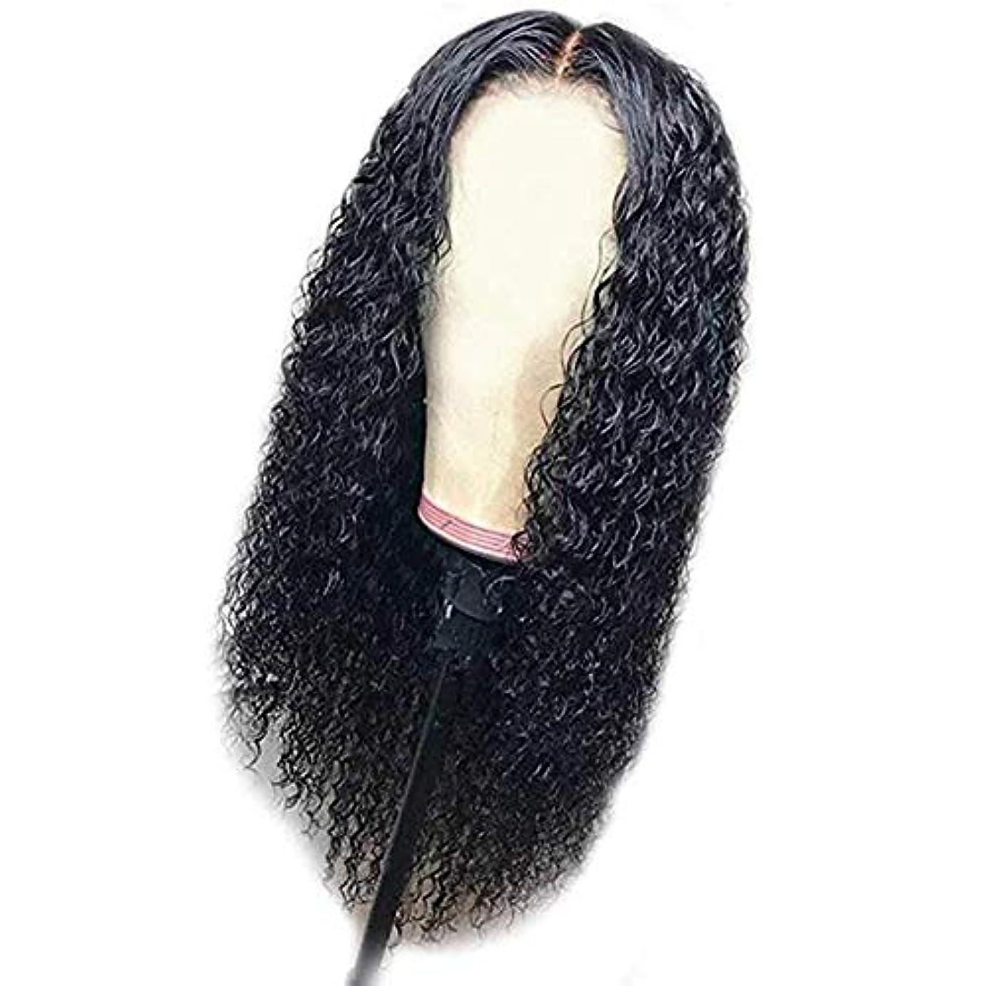 キャンパス光沢のある以前は女性ブラジルかつらレースカーリー合成かつら赤ん坊の毛高品質かつら耐熱ファイバーローズ髪24インチ