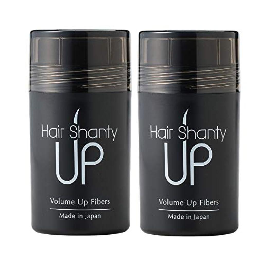 抑制する生物学抑止するHair Shanty Up ヘアシャンティアップ ファイバー本体 2本セット (ミディアムブラウン)