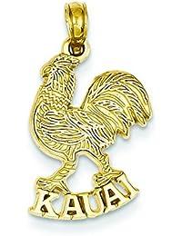 14 K goldkauai Roosterペンダント(ソリッド、ポリッシュ、14 K goldyellowゴールド、テクスチャ、テクスチャBack ) – おおよそ長:横幅:約23.5 MM – 13 mm