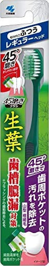 等要求するでも生葉45°磨きブラシ レギュラー ふつう 1本 × 20個セット