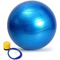 バランスボール A-leaf 65cm ダイエット ヨガボール エクササイズボール トレーニング アンチバースト仕様 ポンプ付 プレゼント