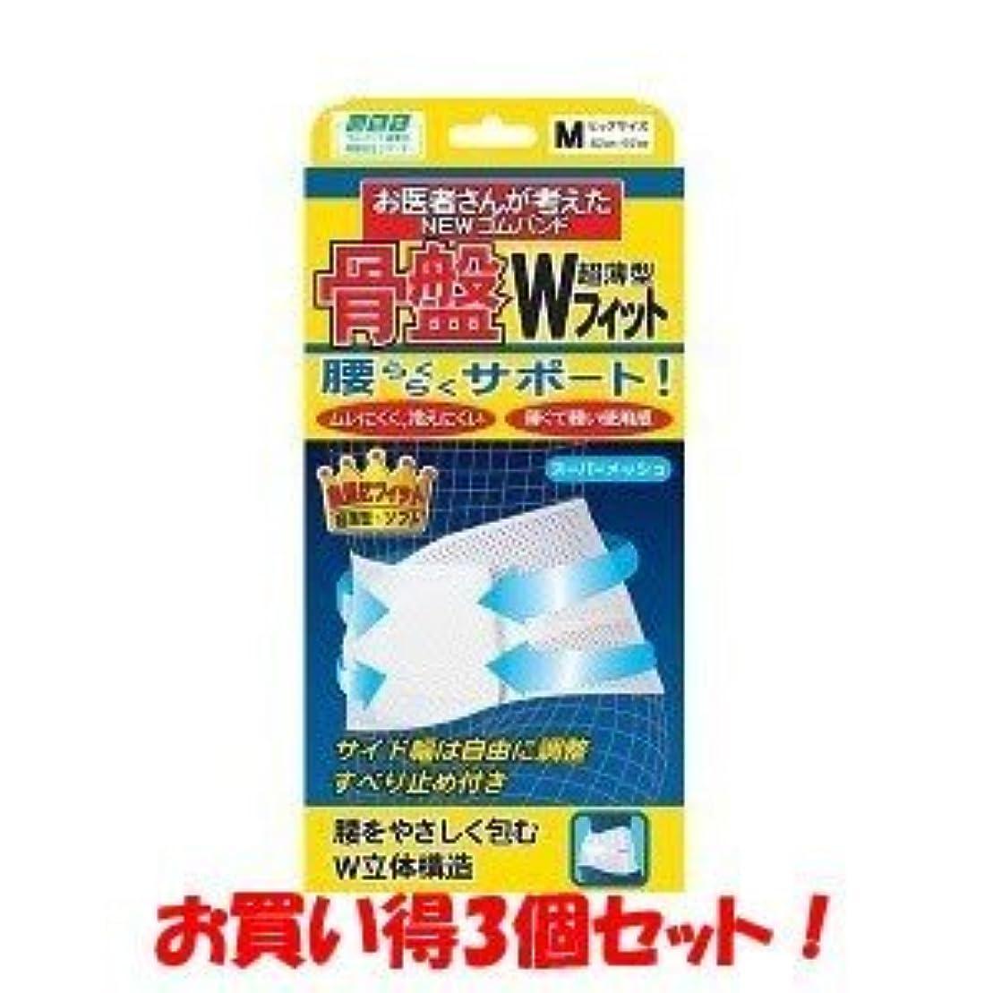 減少寛容灰(ミノウラ)山田式 骨盤Wフィット M(お買い得3個セット)