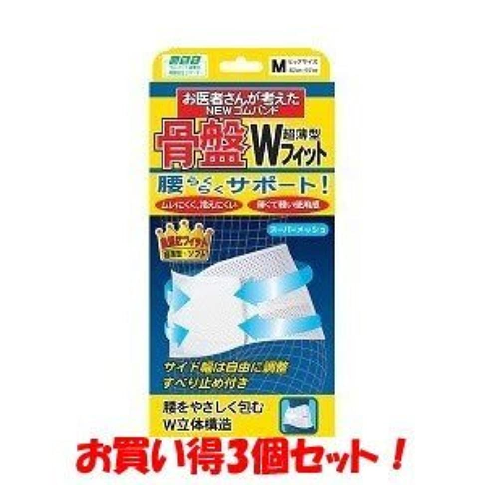 人事友情染色(ミノウラ)山田式 骨盤Wフィット M(お買い得3個セット)
