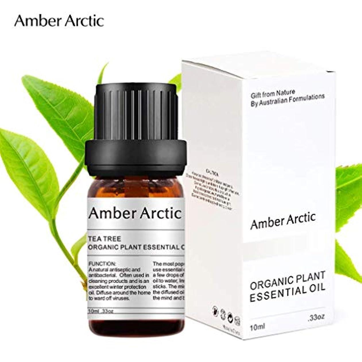 依存断言する回転Amber Arctic ティー ツリー エッセンシャル オイル - 100% 天然 アロマテラピー ティーツリー オイル スプレッド 用 (10ML) ティーツリー