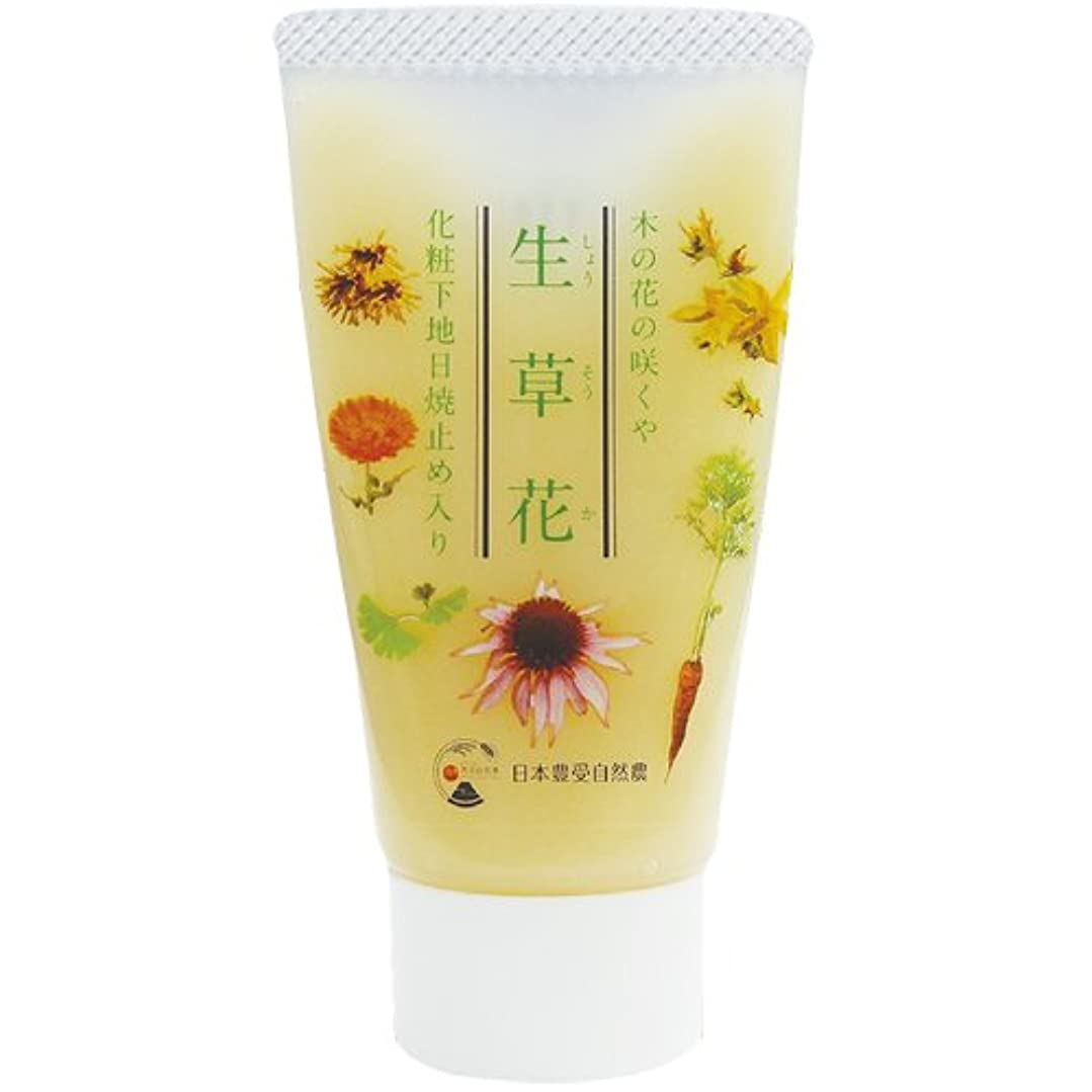 刺繍刺繍スライム日本豊受自然農 木の花の咲くや 生草花 化粧下地 日焼け止め入り 30g