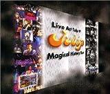 Live Act Tulip′97