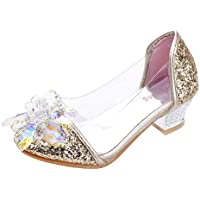 Wangwang Princess Girls Sandals Crystal Flower Glitter Mary Jane Dance Party Cosplay Shoes for Kids Toddler
