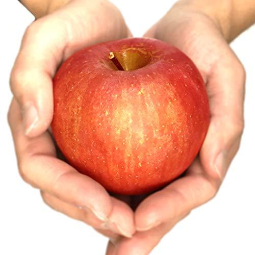 Su-eat 葉とらず 味極み りんご 減農薬 長野県産 ( 訳あり 小玉 サンふじ 約5キロ)