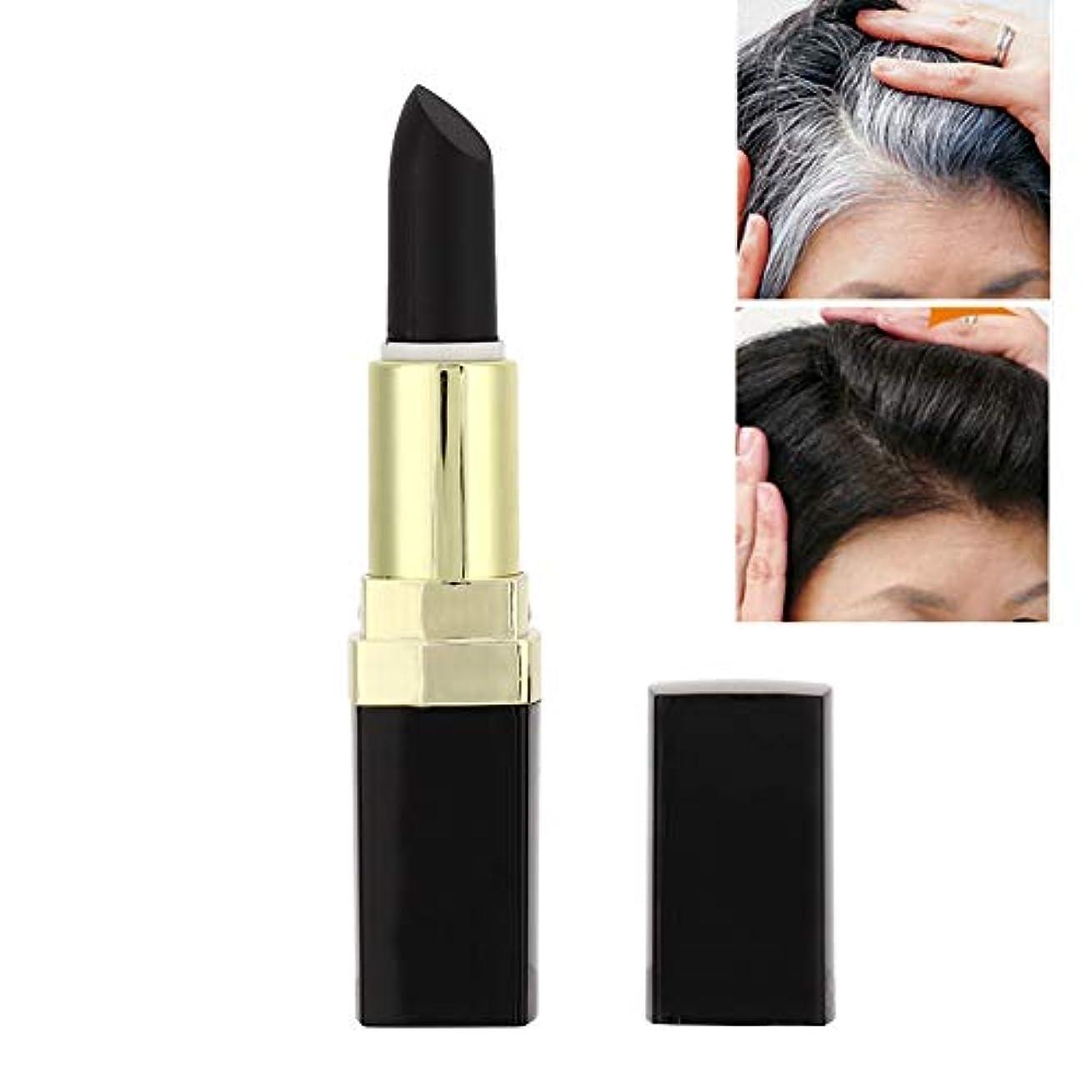 スキッパー装置整理するプロの髪チョーク口紅髪色ペン(ブラック)