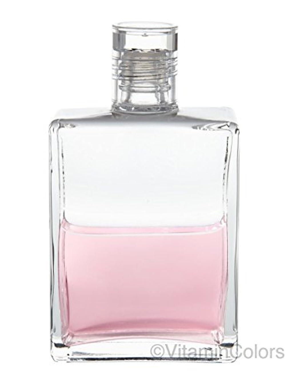通常夜間ビジョンオーラソーマ イクイリブリアムボトル50ml B11「花の鎖/エッセネボトルI」Aurasoma