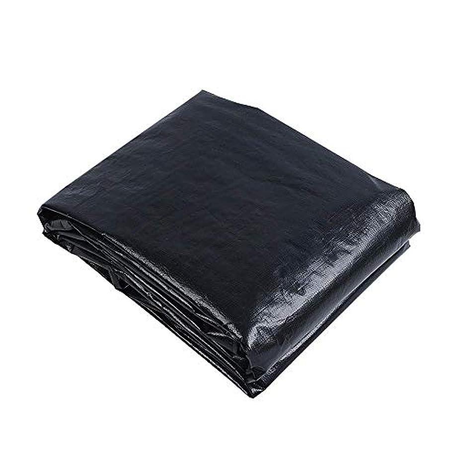 預言者スパイモナリザZX タープ ターポリン防水ヘビー義務プレミアム品質タープシートトラックカバー160g /㎡布 テント アウトドア (Color : Black, Size : 6x8m)