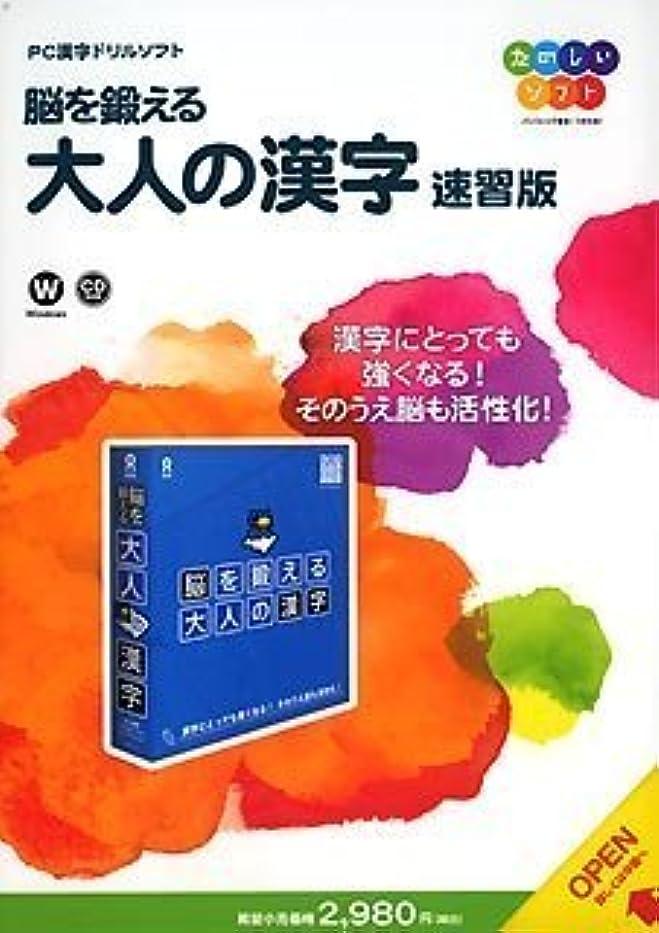 早熟勉強するリラックスしたTS 脳を鍛える 大人の漢字 速習版
