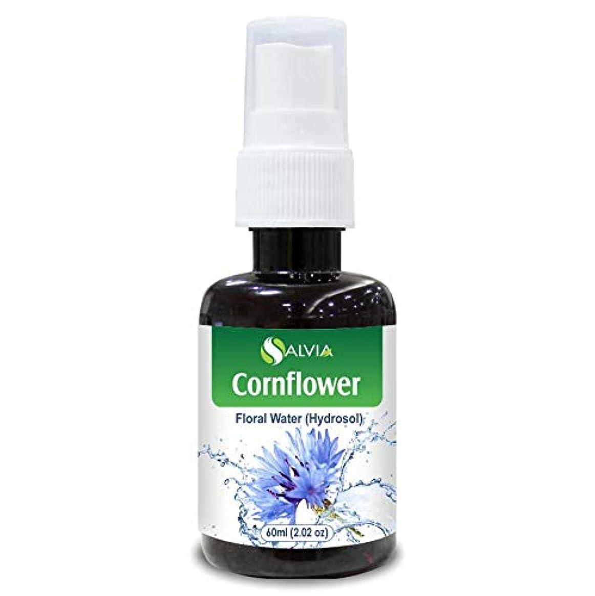 テナント野な仕出しますCornflower Floral Water 60ml (Hydrosol) 100% Pure And Natural