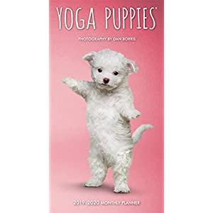 Yoga Puppies 2019-2020 Monthly Planner
