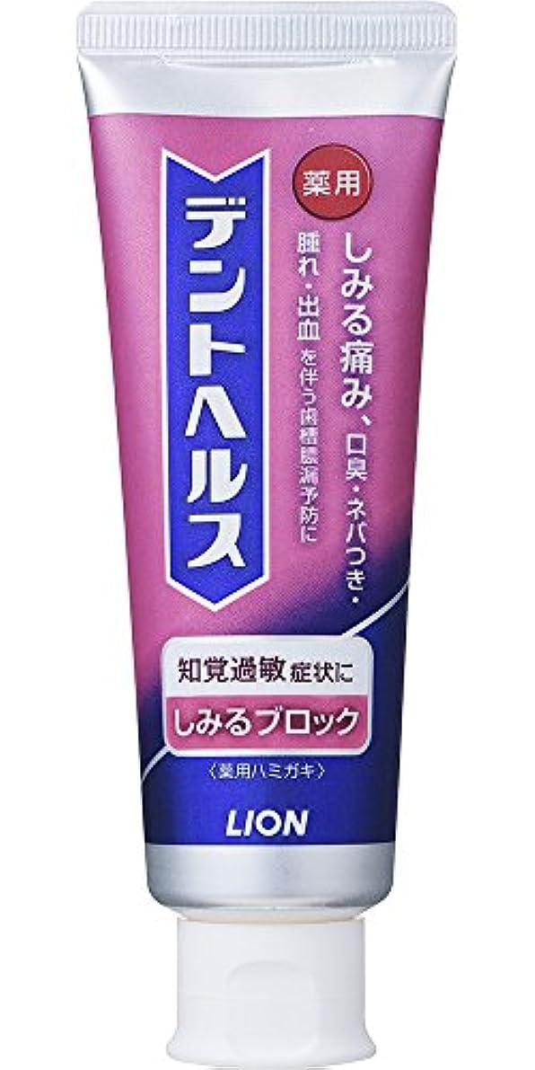 歯槽膿漏予防に デントヘルス 薬用ハミガキしみるブロック 90g (医薬部外品)