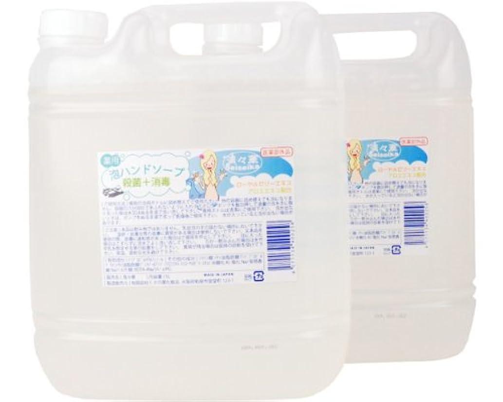 歩道海軍まあ「殺菌?消毒」 ハンドソープ清々華/5L×2(泡ボトル2本付) くさの葉化粧品