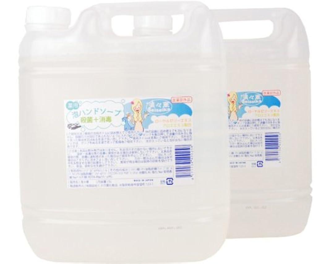 不十分なバイナリ敬の念「殺菌?消毒」 ハンドソープ清々華/5L×2(泡ボトル2本付) くさの葉化粧品