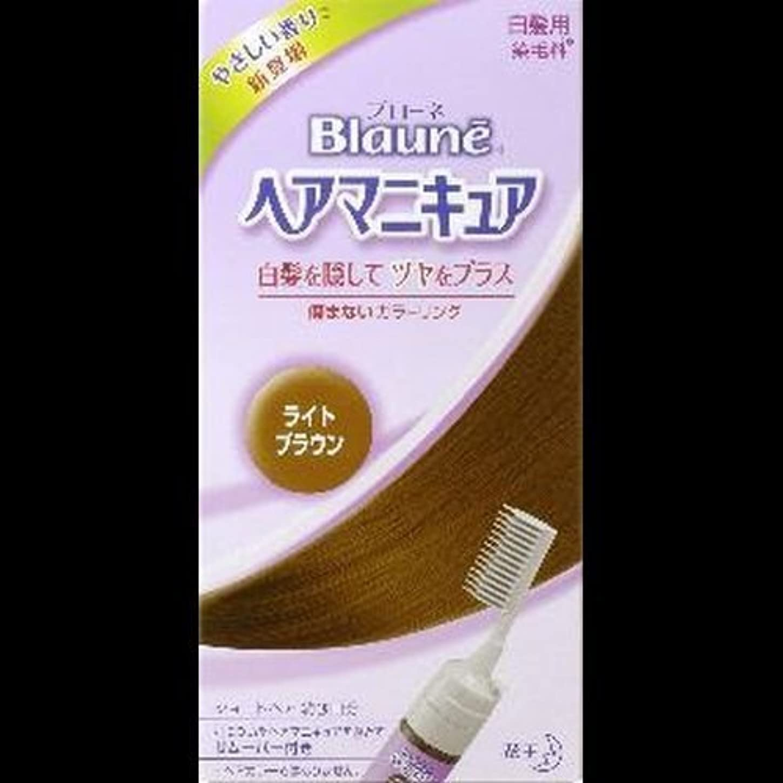 封建スラム標準【まとめ買い】ブローネヘアマニキュア ライトブラウン クシ付 ×2セット