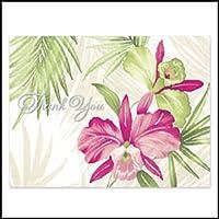 Cards Cattleya Orchid [並行輸入品]