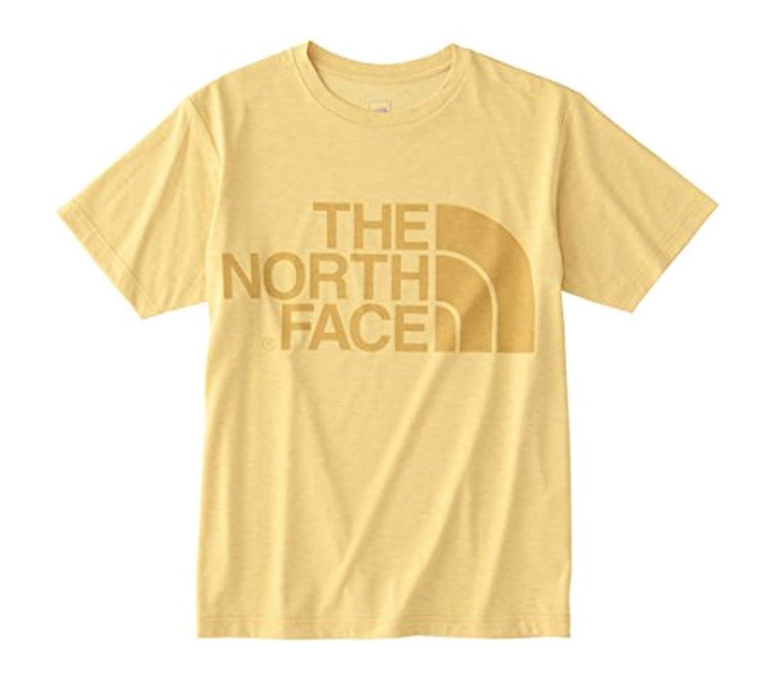グラマーパトワ不快ノースフェイス(THE NORTH FACE) ショートスリーブカラーヘザーロゴティー NT31854 ZY