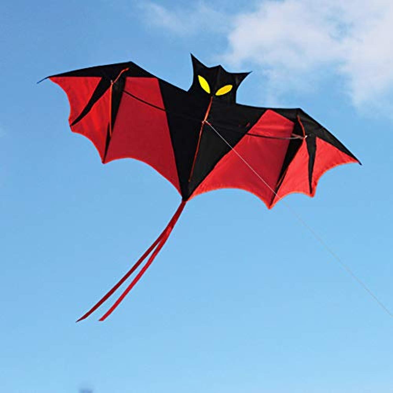 LIXADA 凧 スカイカイト 紙鳶 凧揚げ 軽量で丈夫 ビーチ アウトドア 凧系が付き 子供と大人のおもちゃ プレゼントなど最適