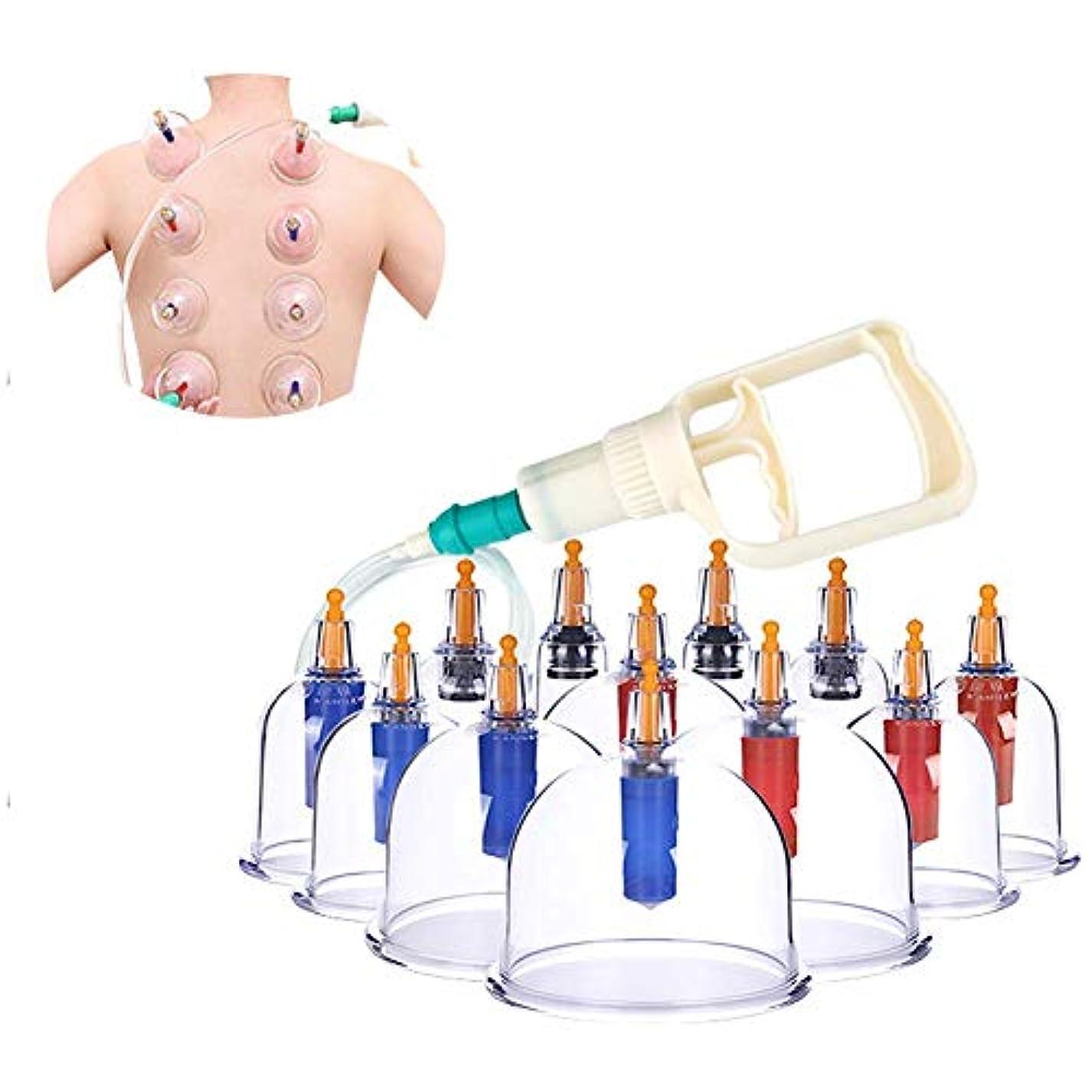 ペニーセンチメンタル解釈的カッピングセラピーセット、真空ポンプとバルブを備えた12個のカッピンググラス、背中の痛みのための自然療法自己治療マッサージ、セルライト、顔、Slim身、腹部