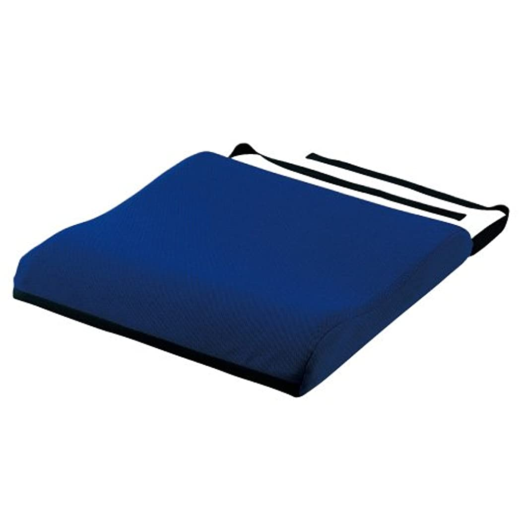 居眠りするはぁ旋回日本エンゼル CPクッションII 1095(40X40X7CM) ブルー