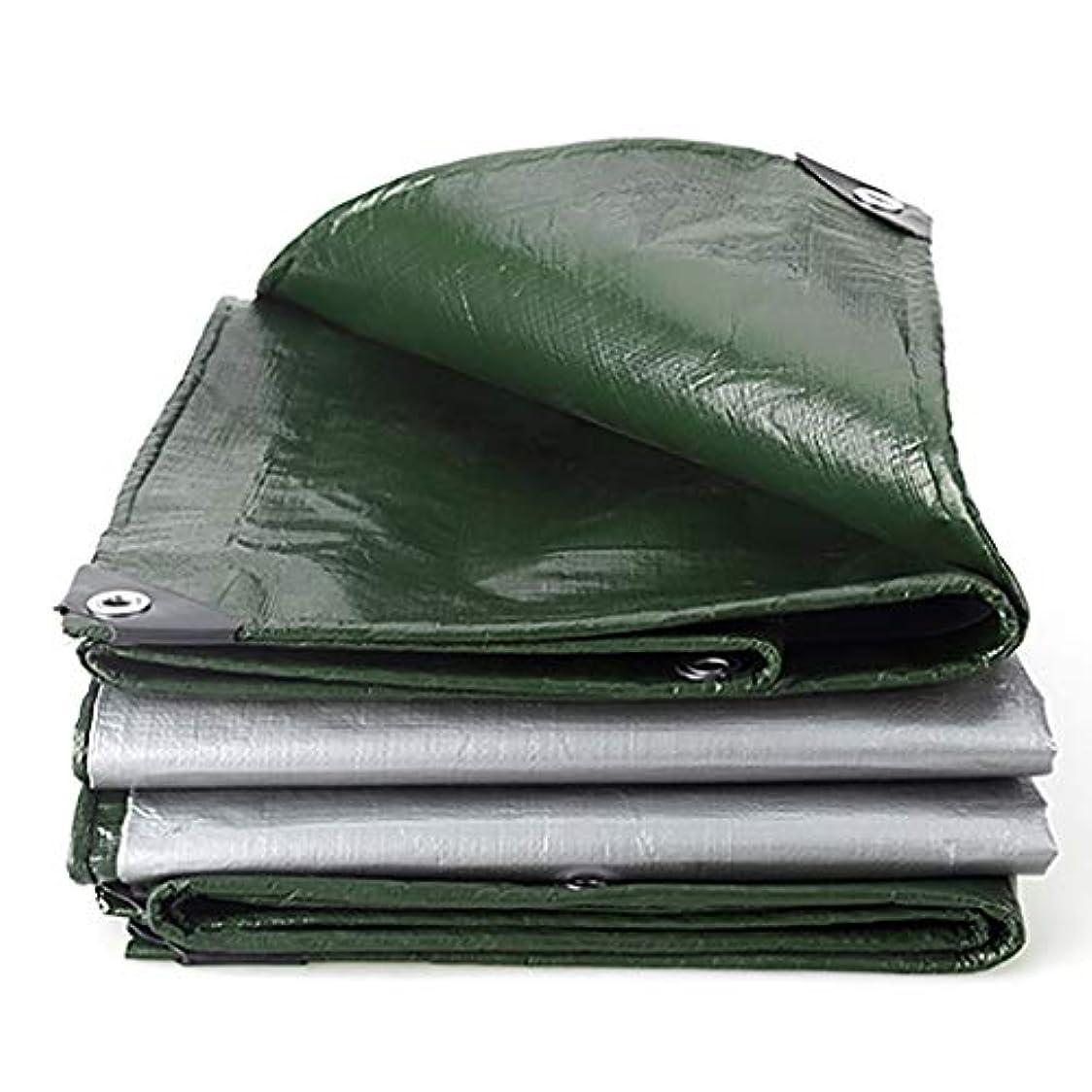 入場料盲目限界タープ キャンプ用防水シート防水ポリプロピレン防水シート風雨防止、酸化防止、軽量 テント (Color : Green and Silver, Size : 5m×8m)
