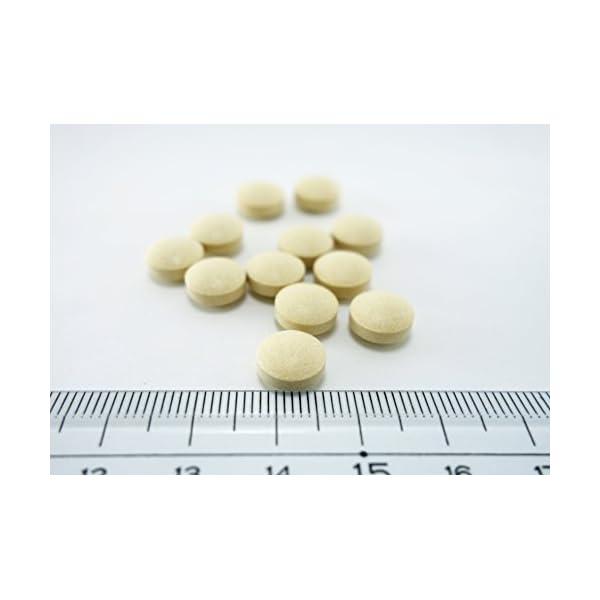小林製薬の栄養補助食品 肝臓エキスオルニチン ...の紹介画像3
