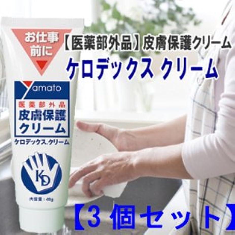する地元乗算医薬部外品 皮膚保護クリーム ケロデックスクリーム48g 3個セット
