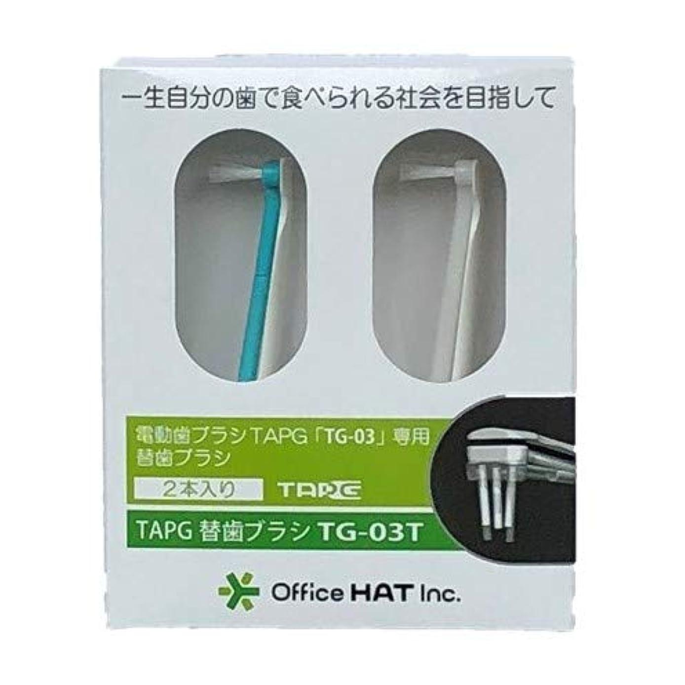 TAPG専用替え歯ブラシ (長(10㎜?8㎜))