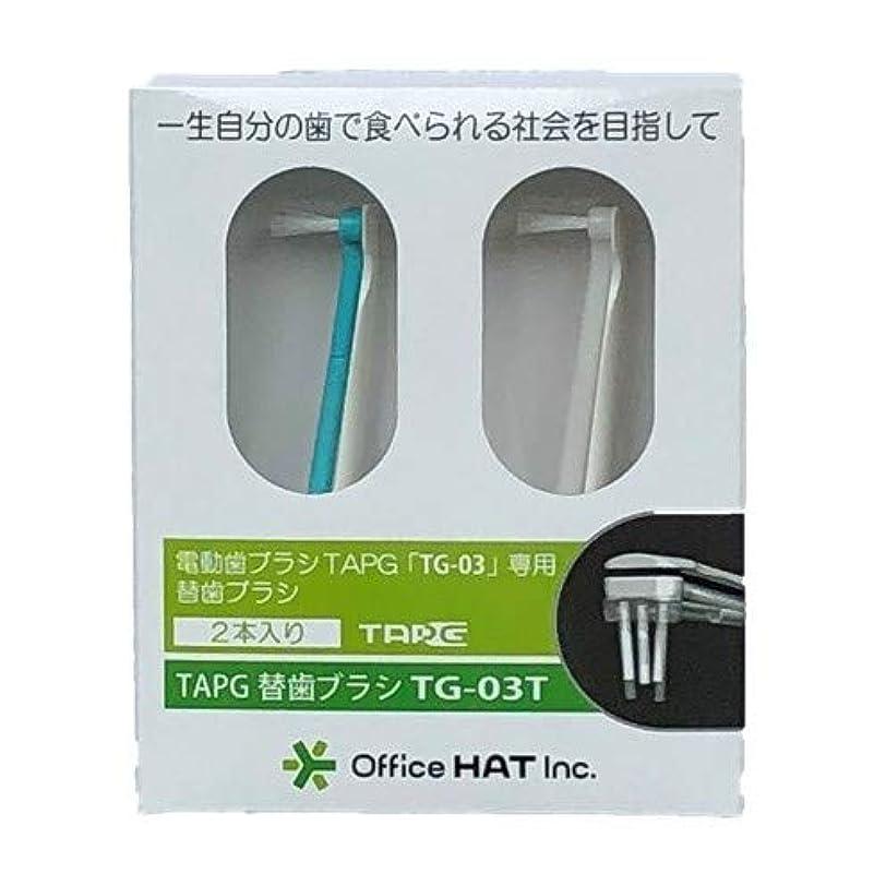 二層興奮従来のTAPG専用替え歯ブラシ (長(10㎜・8㎜))