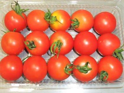 ペティトマト
