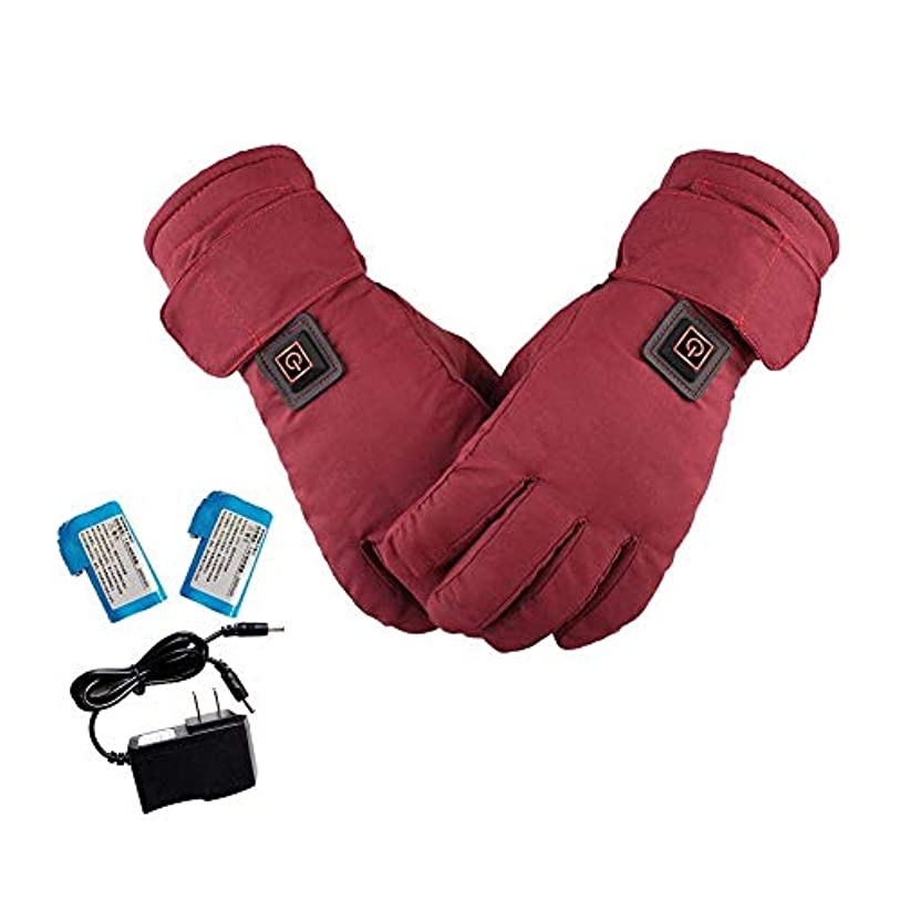引き算肥料受賞女性加熱手袋、関節炎スキーオートバイサイクリング用ハンドウォーマー防風充電式防水タッチスクリーンの冬の熱手袋