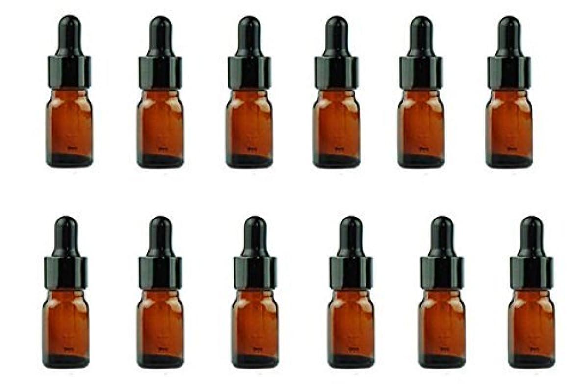 アイデアプラットフォーム脅迫12PCS Amber Empty Refillable Glass Eye Dropper Bottles With Black Dropping Cap Makeup Cosmetic Essential Oil Sample Containers With Glas Pipette (5ml) [並行輸入品]