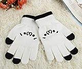 しょぼ?ん (´・ω・`) Face の 手袋 癒し系 iPhone スマホ タブレット タッチ パネル 3本指 対応 手袋 顔文字 静電式 のびのび 防寒 あったか グローブ ホワイト