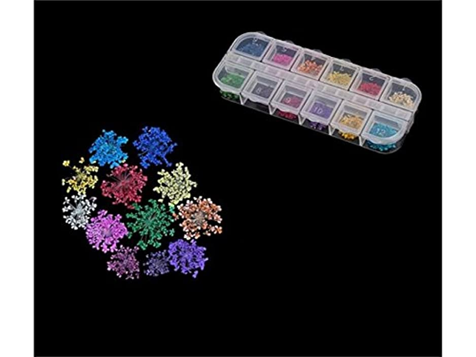 マトロン花に水をやる路地Osize ファッションドライフラワーネイルデコレーション美しい先端ソリッドカラーネイルアートスターネイルステッカーネイルデカールネイルステッカー(カラフル)