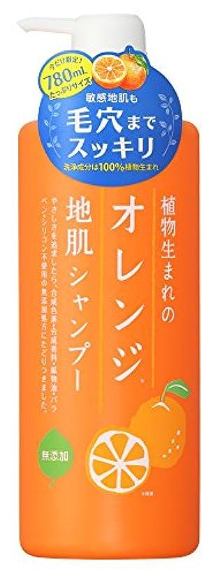 敬礼スケジュール郵便物植物生まれのオレンジ地肌シャンプーN たっぷりサイズ 780ml