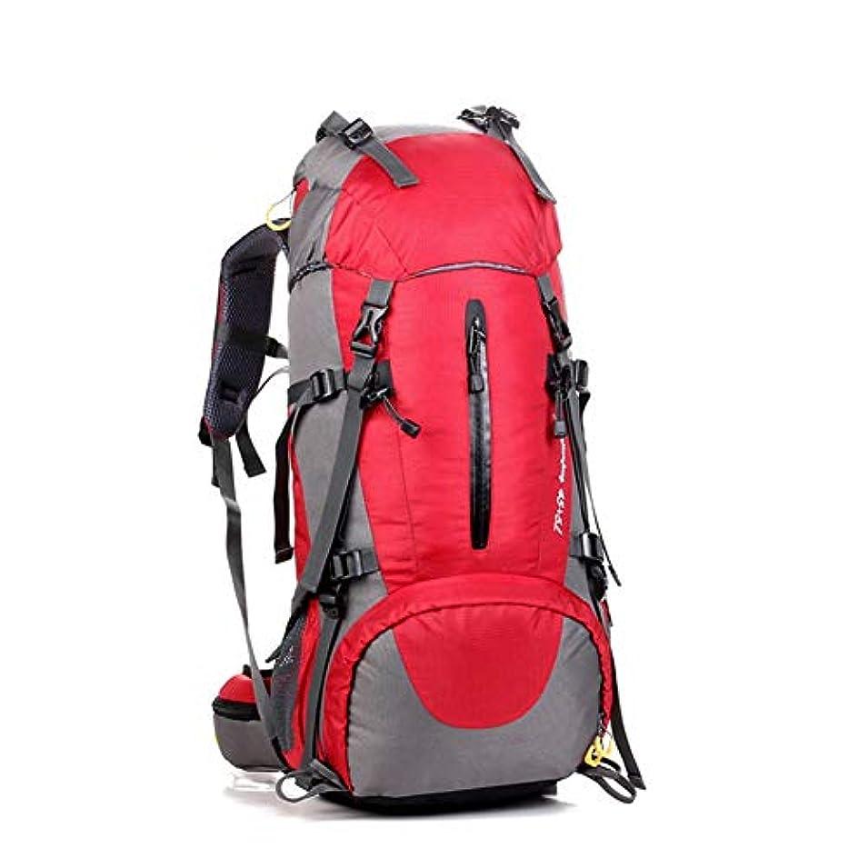 訪問純度キモいGAOFENG バックパック ハイキング 登山バッグ キャンプ トレッキング 旅行登山 リュックサック クライミング 荷物バッグ レインカバー付きの高容量屋外プラグイン