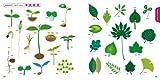 エコ素材集 Green&Natural 画像