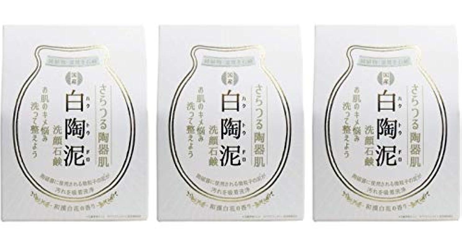 踏みつけ有用オゾンペリカン石鹸 白陶泥洗顔石鹸 100g ×3個セット