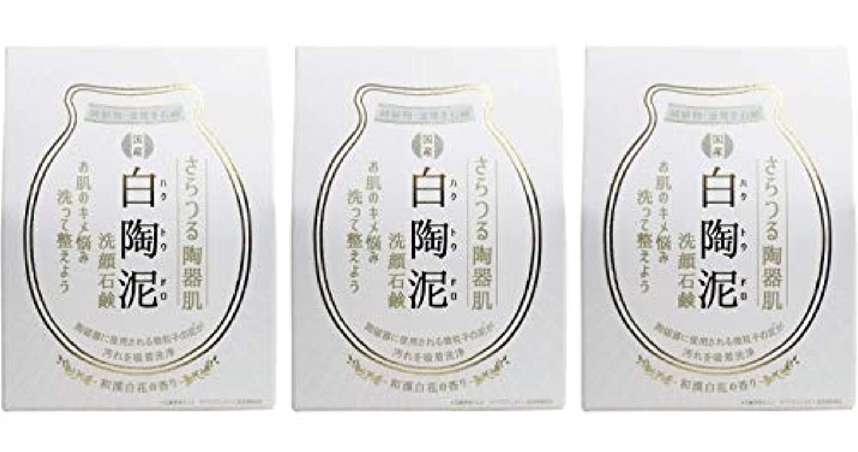 バルブ精査アノイペリカン石鹸 白陶泥洗顔石鹸 100g ×3個セット