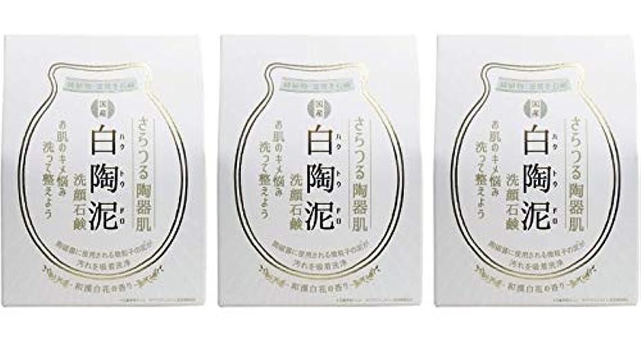 ハーネスリアル行政ペリカン石鹸 白陶泥洗顔石鹸 100g ×3個セット