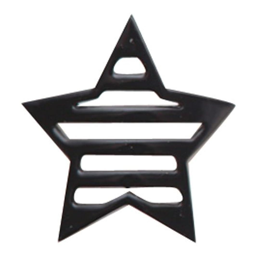 微生物ステレオ補助リトルプリティー ネイルアートパーツ 星ボーダー L ブラック 10個