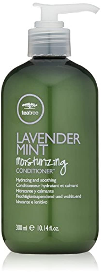 きしむつかの間知人Paul Mitchell Lavender Mint Moisturising Conditioner - 300ml