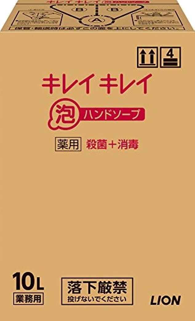 作曲家運河リーフレット【大容量】キレイキレイ 薬用泡ハンドソープ 10L