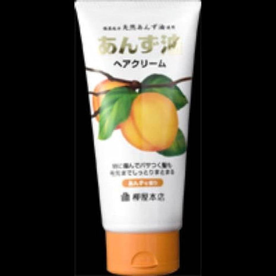 ライフルピジントランザクション【まとめ買い】柳屋 あんず油 ヘアクリーム160g ×2セット