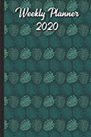 Weekly Planner 2020: Midnight Forest Animals with Fox Deer Squirrel Bird Hedgehog Cover Design. Perfect Gift for Boys Girls and Adults of All Ages.