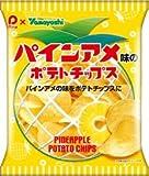 山芳製菓 ポテトチップス パインアメ味のポテトチップス 48g×12袋