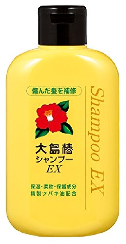 揃える違反トマト大島椿 EXシャンプー 300mL (ハリ コシ 精製ツバキ配合)
